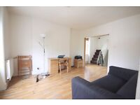 Modern, Bright & Spacious, recently decorated, Wood Floors, Fantastic Location
