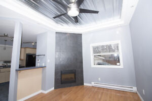 House Rental - Fully Renovated 2 Bedroom Suite - Available Oct 1