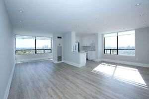 Condo House and Business Renovations
