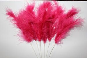 Wired Fuschia Feathers Narrow Weddings Bouquets Craft Millinery Corsage x 6