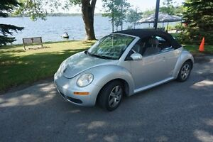 Punch Buggy, Beach Buggy, Love Bug, Herby