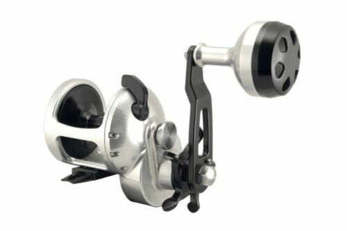 Accurate Tern Star Drag Conventional Reel