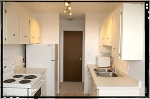SUPER lower level suite (few steps) 1 mo. FREE RENT for ADULT(S)
