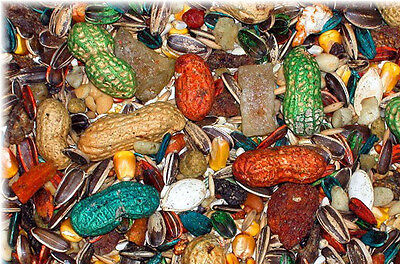 Abba Bird Seed 1500 Parrot  4 lb bag