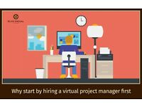 Business Assistance/Project Management on offer