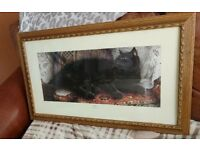 Beautiful 'Ophelia' cat print by Sheila Tilmouth