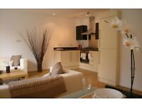 Absolutely Stunning 1 Bed Flat- Brixton