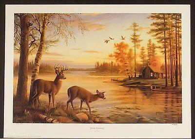 """QUIET EVENING"" Mary Pettis PRINT 19x29 Deer Buck Doe Cabin Lake Fall Scene S/N"