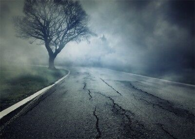 Foggy Cracked Road Scene Photography Background 7x5FT Decayed Tree Backdrops