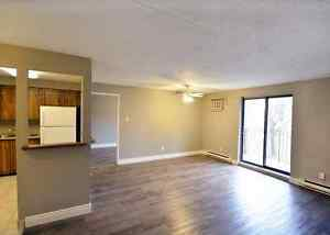 UPGRADED 2BR/1.5BA UNIT - WATERLOO Kitchener / Waterloo Kitchener Area image 1