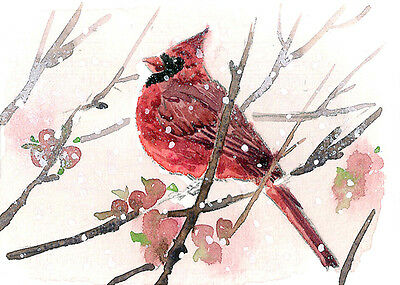 ACEO Limited Edition- Red in a snowy day, Bird art print