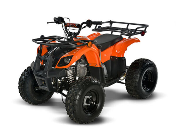 Used 2008 Taotao MINI VTT