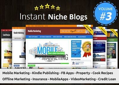 Instant Niche Plr Wordpress Blogs Package - Volume3 - Work From Home Business