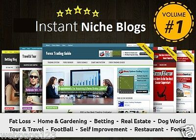 Instant Niche Plr Wordpress Blogs Package - Volume1 - Ready To Business Adsense