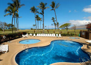 Maui Seaside Condo for Rent 1 or 2 weeks!