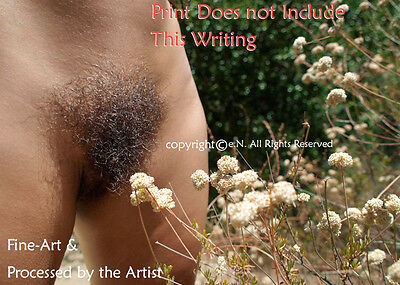 NUDE Frontal, Abdominal, Hairy, Tan, NAKED, OUTDOOR Photo, DIRECT FROM ARTIST - Hairy Nude