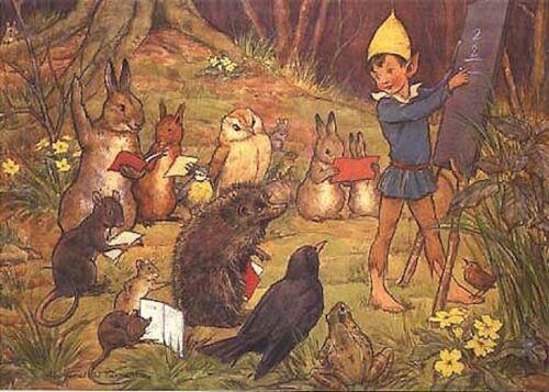 Margaret Tarrant Postcard Woodland School Fairy Teacher Animals Medici