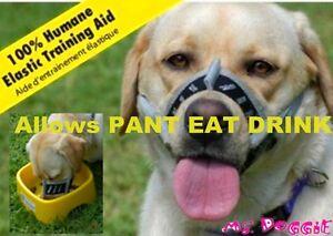 Dog Muzzle For Eating
