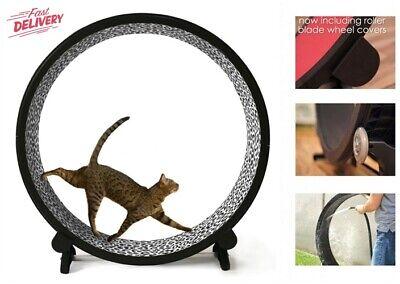 Indoor Cat Exercise Wheel Kitty Running Training Treadwheel Treadmill Toy Pet