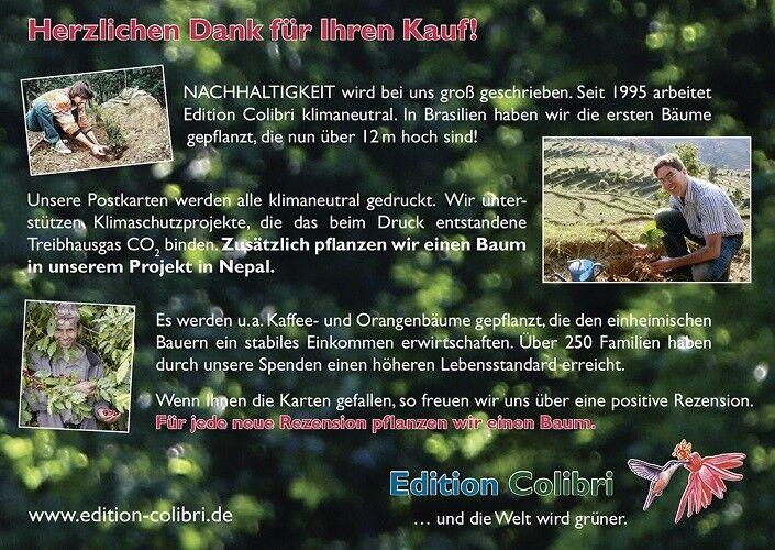 Einladungskarten Kindergeburtstag im Kletterpark / Hochseilgarten im Wald
