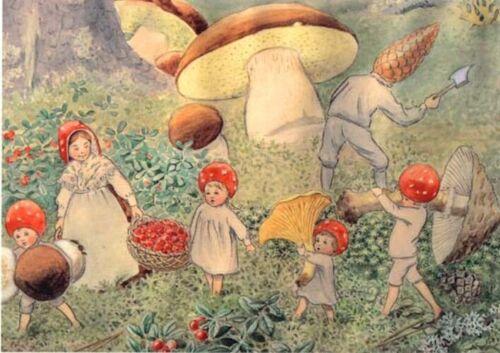 Elsa Beskow Postcard Mushroom Children Harvesting Mushrooms Fairy Tale Tomte Elf