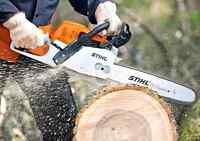 AFFORDABLE TREE CUTTING & TREE REMOVAL