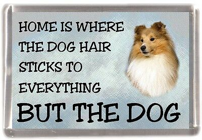 "Shetland Sheepdog/Sheltie Fridge Magnet ""Home is Where"" Design No 2 by Starprint"