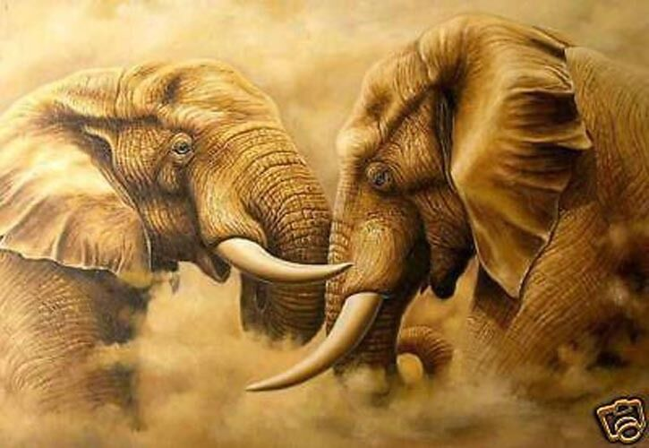 ZOPT939 animal african elephant painted hand oil painting art on CANVAS