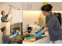 Cleaning Lady,Reliable Flexible,Domestic Cleaner,Professional End of Tenancy Cleaning,House Cleaner