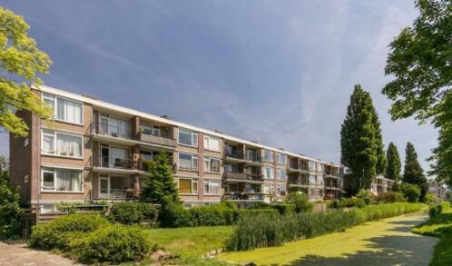 Huizen Huren Rotterdam : ≥ te huur kamer appartement tholenstraat te rotterdam huizen