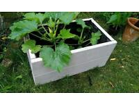 Solid wood rustic planters