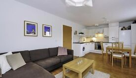 Modern 2 double bedroom flat in Gypsy Hill