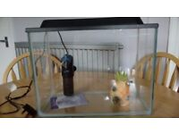 24 litre Fish Tank / Aquarium with Filter & Ornament