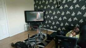BARGAIN TV UNIT +COFFEE TABLE + LAMP TABLE