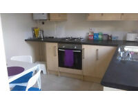 Small double in friendly vegan houseshare, Horfield