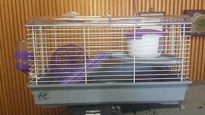 HAMSTER CAGE LINO PURPLE GREAT CAGE FOR DWARF HAMSTERS! #