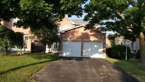 Well maintained 3 large 3 bedroom detached in Ajax