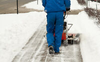 SNOW CLEANING - SUMMER SIDE - WALKER LAKE - CHARLSWORTH