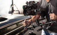 Looking for a professional director?