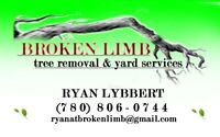 TREE REMOVAL AND YARD SERVICES
