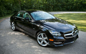 Premium Car Rentals with Chauffeur