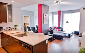 Fully furnished 2 bedroom modern condo downtown