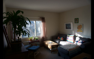MAY 1 SOUTHEND 1 BED APT SUBLET W/ OPTION FOR LEASE TAKEOVER
