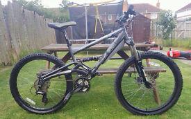 saracen raw 2 adult mountain bike