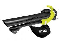 Ryobi Electric Blower Vacuum: £35