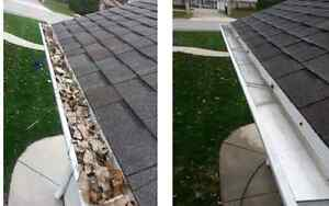 Gutter Cleaning / Lawn Care / Spring Clean Ups