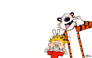 Looking for Calvin and Hobbes books!
