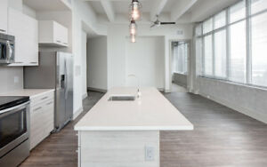 MSVC+Dal+SMU must see! Free 1 month, Luxury brand new 2BD APT!