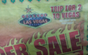 Trip for 2 to Las Vegas $450!!!!