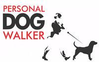Dog walker in Martensville